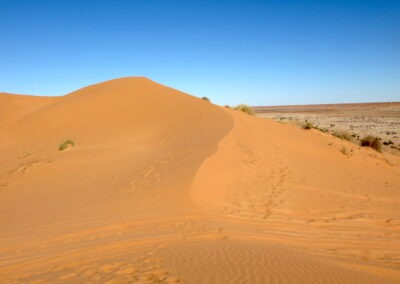 Big Red - the dream for every outback fan in the Simpson Desert French Line