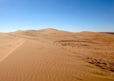 Surrounded by dunes in the Simpson Desert French Line