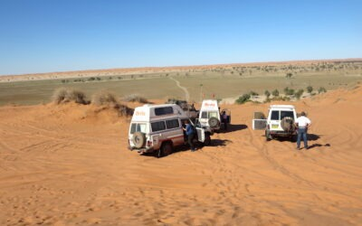 Simpson Desert – French Line