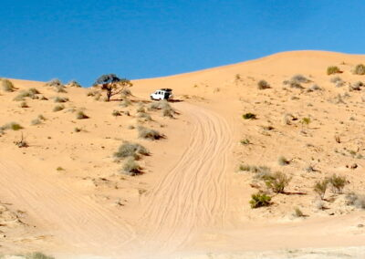Tackling a dune in the Simpson Desert French Line