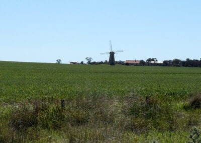 The Lily, Stirling Ranges, Western Australia, Dutch Windmill