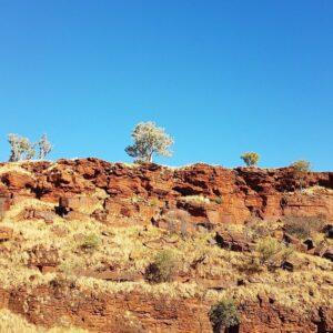 landscape in western australia